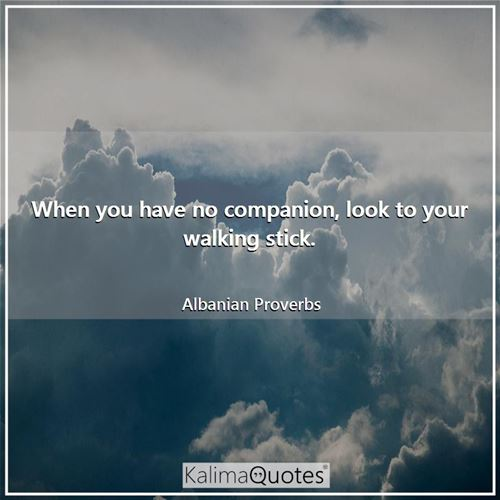 When you have no companion, look to your walking stick. - Albanian Proverbs