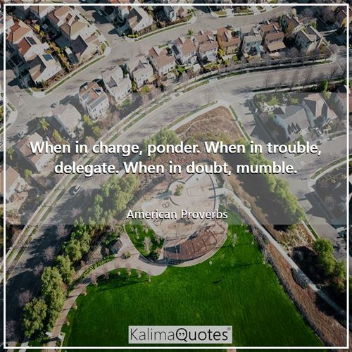 When in charge, ponder. When in trouble, delegate. When in doubt, mumble. - American Proverbs