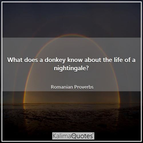 What does a donkey know about the life of a nightingale? - Romanian Proverbs