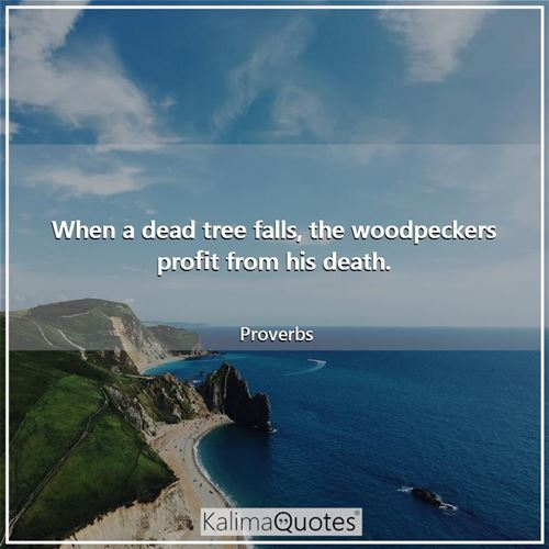 When a dead tree falls, the woodpeckers profit from his death.