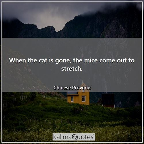 When the cat is gone, the mice come out to stretch. - Chinese Proverbs