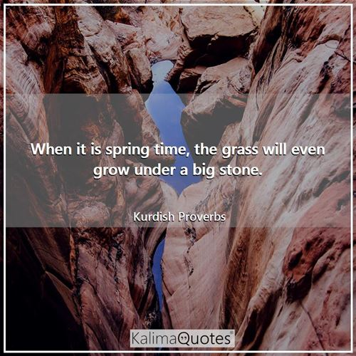 When it is spring time, the grass will even grow under a big stone.