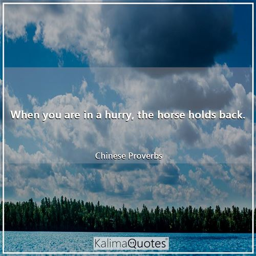 When you are in a hurry, the horse holds back. - Chinese Proverbs