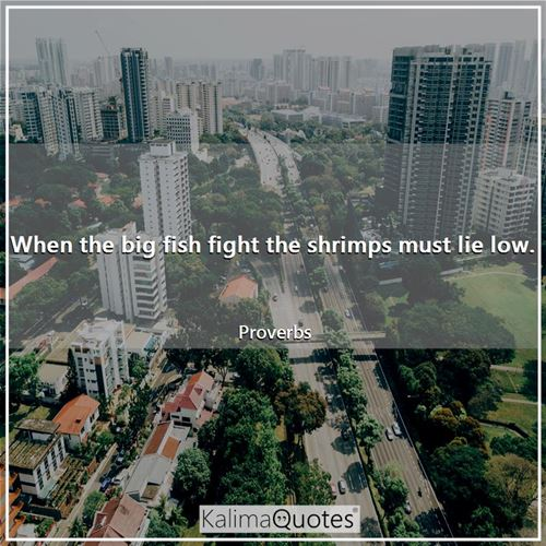 When the big fish fight the shrimps must lie low.