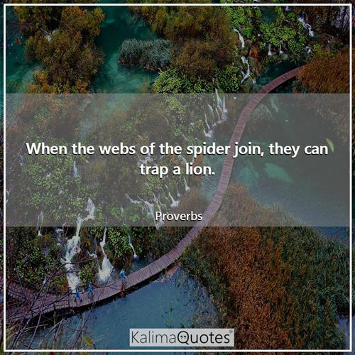 When the webs of the spider join, they can trap a lion. - Proverbs