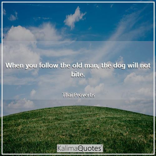 When you follow the old man, the dog will not bite. - Thai Proverbs