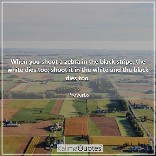 When you shoot a zebra in the black stripe, the white dies too; shoot it in the white and the black  - Proverbs
