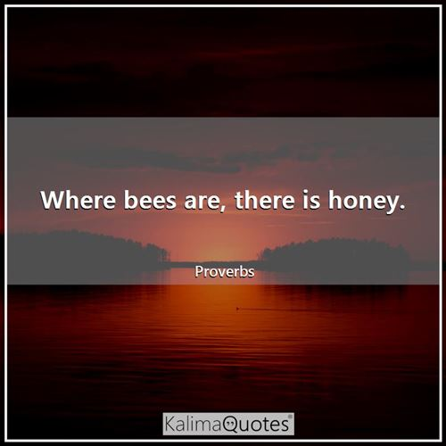Where bees are, there is honey.