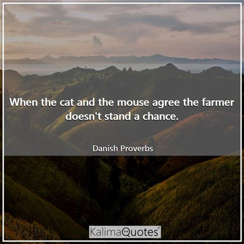 When the cat and the mouse agree the farmer doesn't stand a chance. - Danish Proverbs