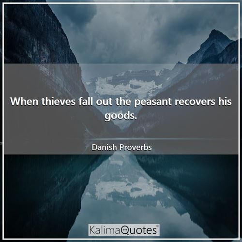 When thieves fall out the peasant recovers his goods. - Danish Proverbs