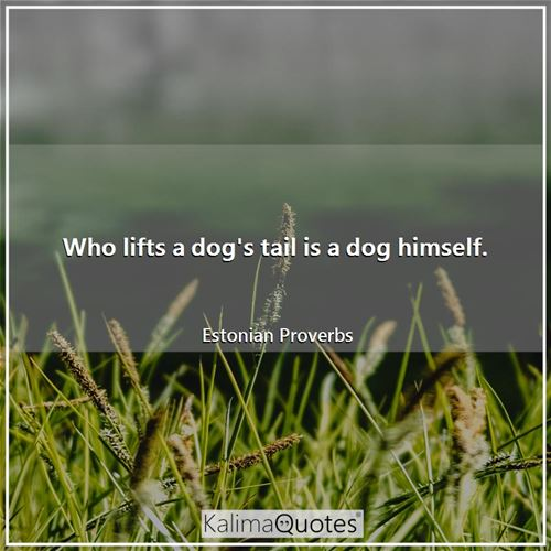 Who lifts a dog's tail is a dog himself. - Estonian Proverbs
