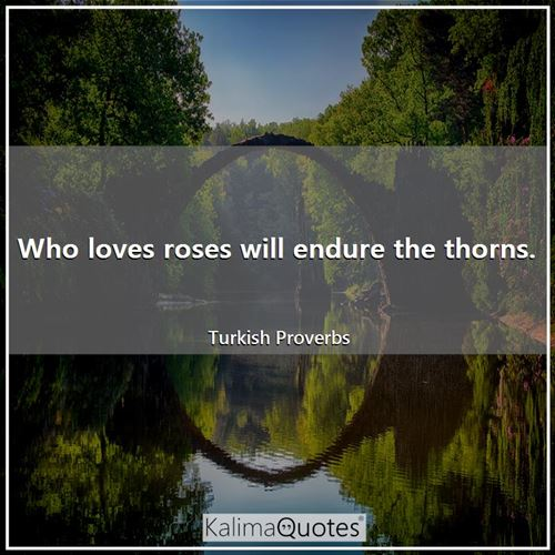 Who loves roses will endure the thorns.
