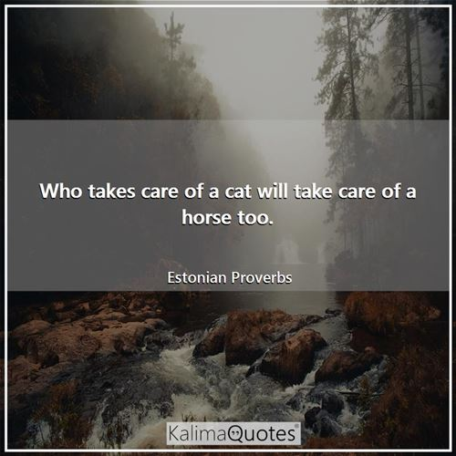 Who takes care of a cat will take care of a horse too. - Estonian Proverbs