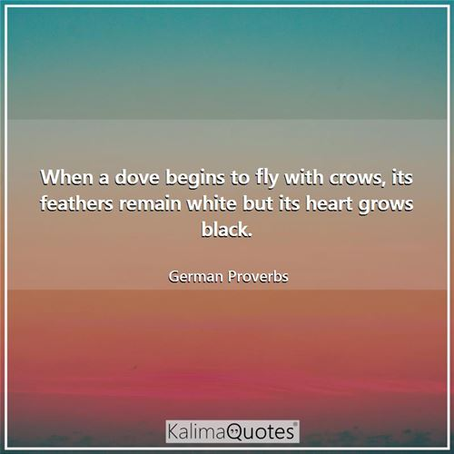 When a dove begins to fly with crows, its feathers remain white but its heart grows black. - German Proverbs