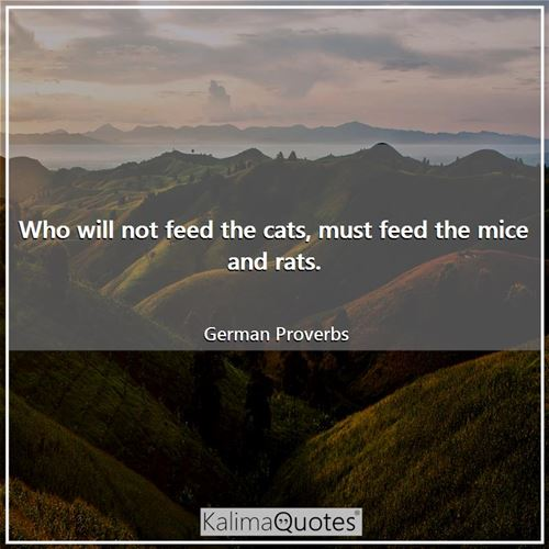 Who will not feed the cats, must feed the mice and rats.