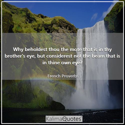 Why beholdest thou the mote that is in thy brother's eye, but considerest not the beam that is in thine own eye?