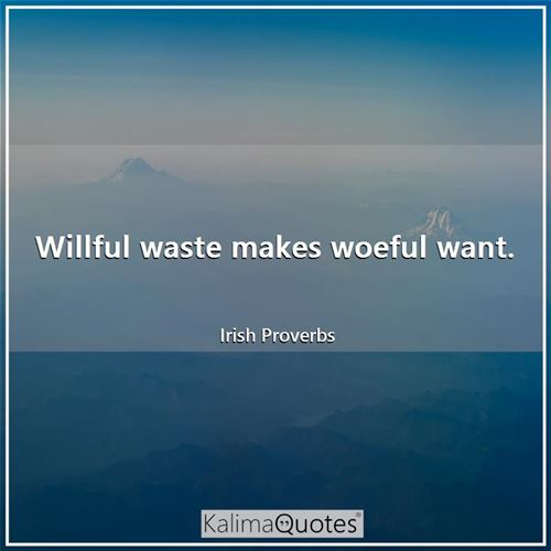 Willful waste makes woeful want.