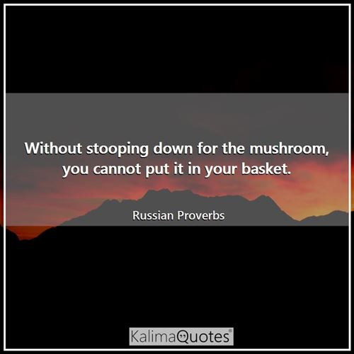 Without stooping down for the mushroom, you cannot put it in your basket. - Russian Proverbs