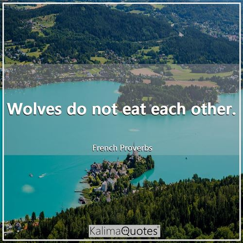 Wolves do not eat each other. - French Proverbs