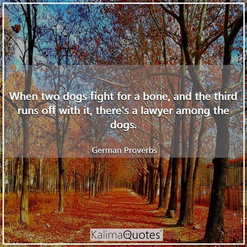 When two dogs fight for a bone, and the third runs off with it, there's a lawyer among the dogs.