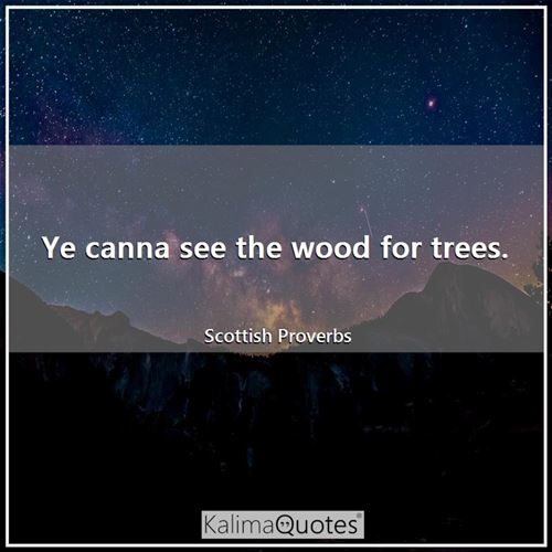 Ye canna see the wood for trees.