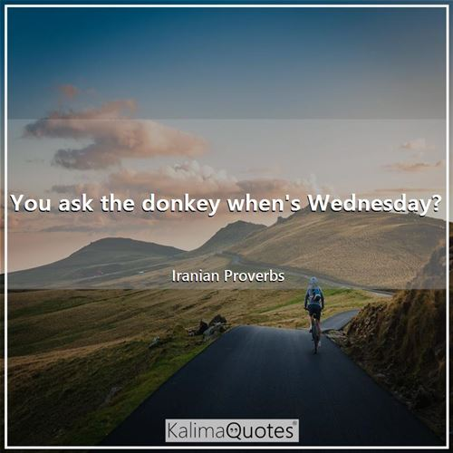 You ask the donkey when's Wednesday?