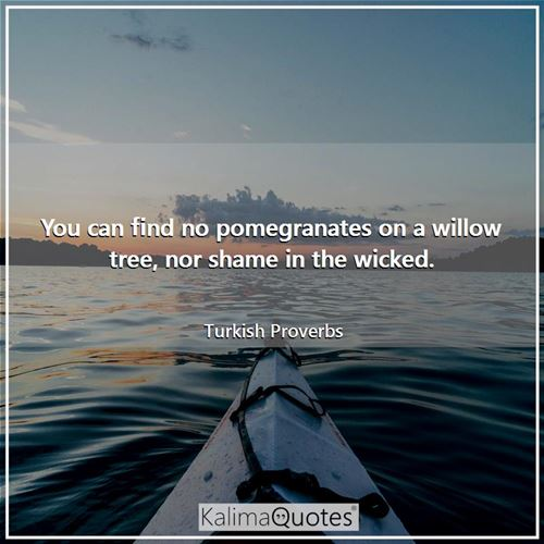 You can find no pomegranates on a willow tree, nor shame in the wicked.
