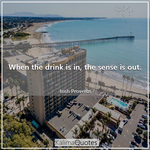 When the drink is in, the sense is out. - Irish Proverbs