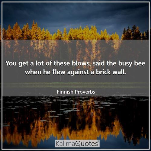 You get a lot of these blows, said the busy bee when he flew against a brick wall.