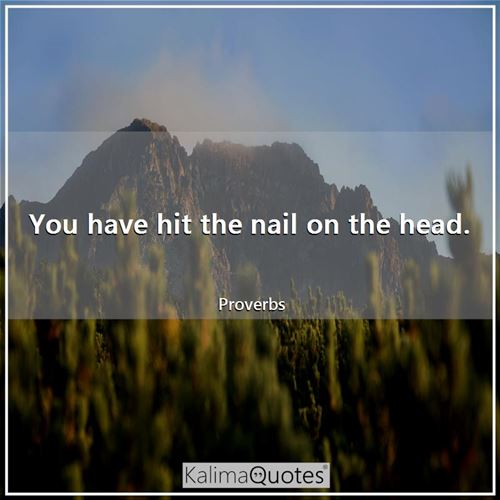 You have hit the nail on the head. - Proverbs