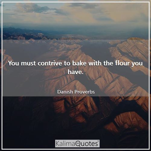 You must contrive to bake with the flour you have. - Danish Proverbs