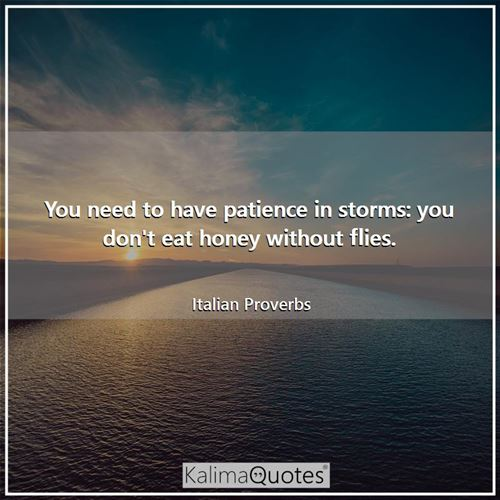 You need to have patience in storms: you don't eat honey without flies.