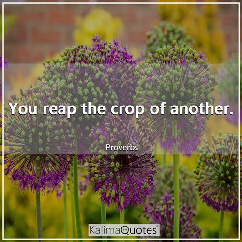You reap the crop of another. - Proverbs