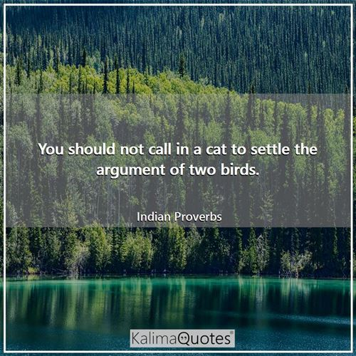 You should not call in a cat to settle the argument of two birds.