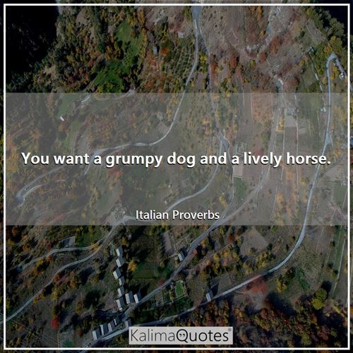 You want a grumpy dog and a lively horse.