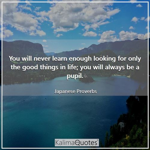 You will never learn enough looking for only the good things in life; you will always be a pupil.
