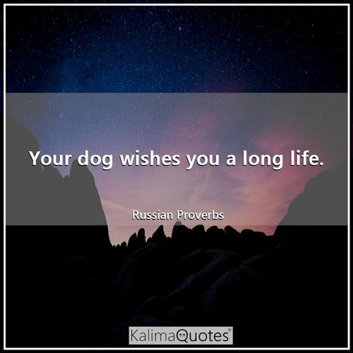 Your dog wishes you a long life. - Russian Proverbs