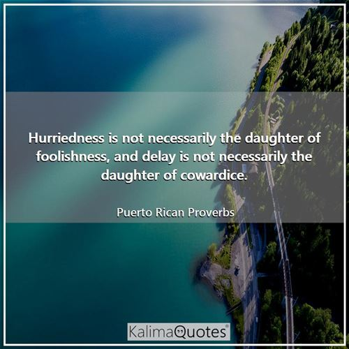 Hurriedness is not necessarily the daughter of foolishness, and delay is not necessarily the daughter of cowardice.