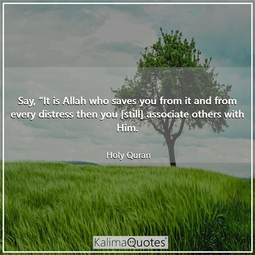 "Say, ""It is Allah who saves you from it and from every distress then you [still] associate others with Him."