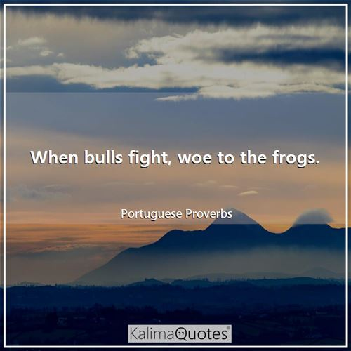 When bulls fight, woe to the frogs. - Portuguese Proverbs