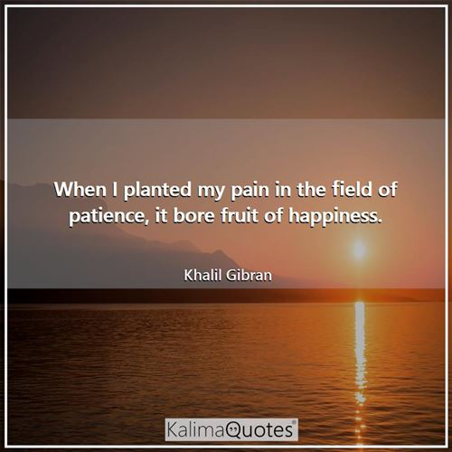 When I planted my pain in the field of patience, it bore fruit of happiness.