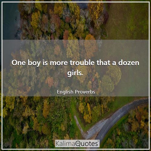 One boy is more trouble that a dozen girls. - English Proverbs