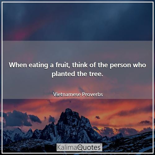 When eating a fruit, think of the person who planted the tree. - Vietnamese Proverbs