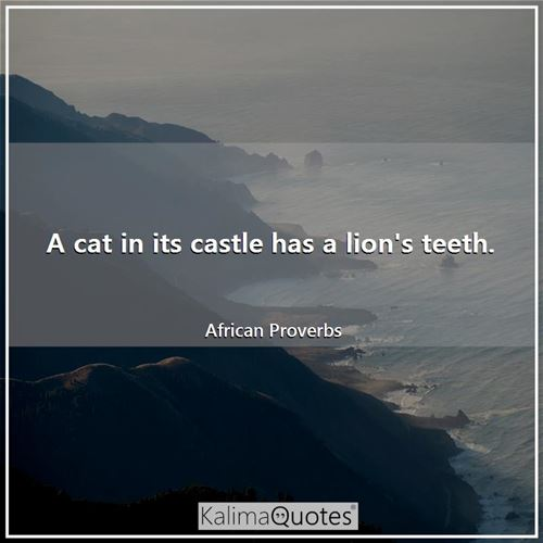 A cat in its castle has a lion's teeth. - African Proverbs