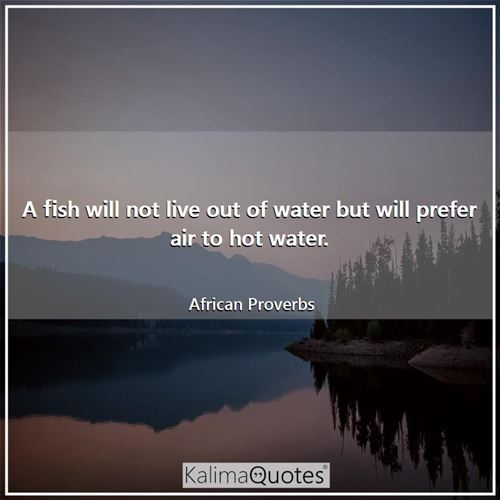 A fish will not live out of water but will prefer air to hot water. - African Proverbs