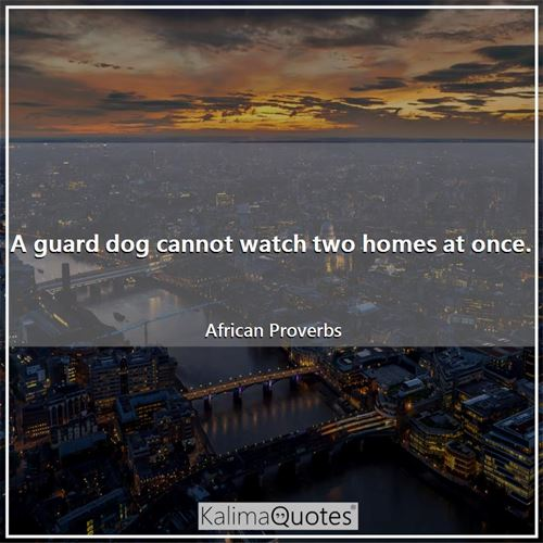 A guard dog cannot watch two homes at once.