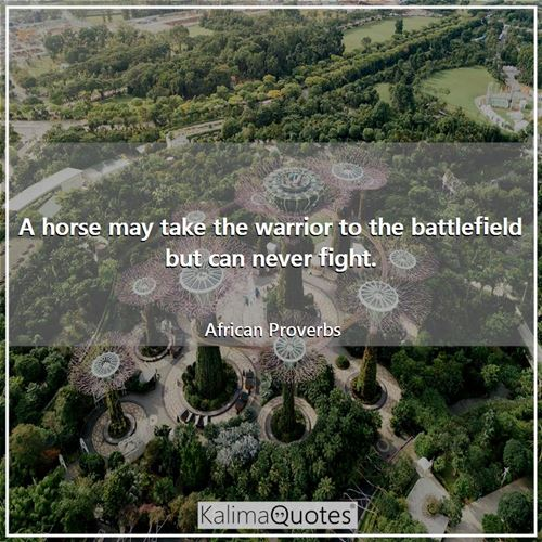 A horse may take the warrior to the battlefield but can never fight. - African Proverbs