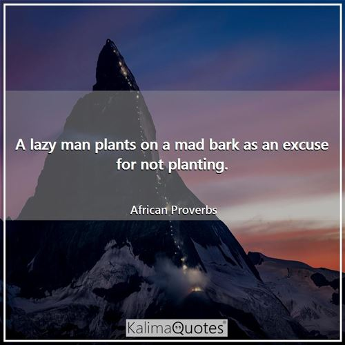 A lazy man plants on a mad bark as an excuse for not planting. - African Proverbs