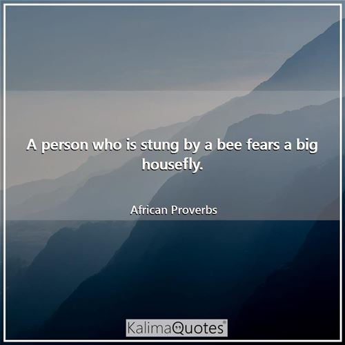 A person who is stung by a bee fears a big housefly. - African Proverbs