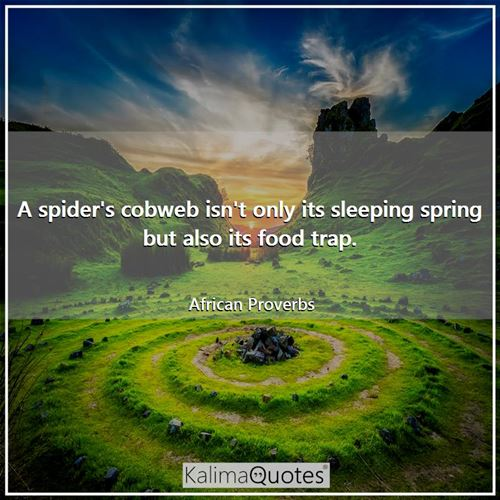 A spider's cobweb isn't only its sleeping spring but also its food trap. - African Proverbs
